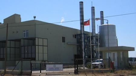 Global Energy Cogeneration Plant
